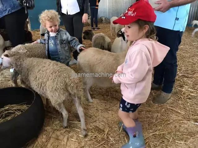 Farm life + interactive experience